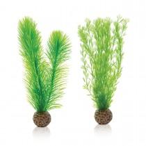 Set decoratiune feriga verde mica, Biorb