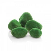 Set pietricele decorative cu muschi Biorb, verde