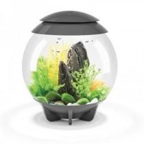 Set complet acvariu cu decoratiuni BiOrb Halo 30 litri MCR, Gri