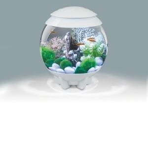 Set complet acvariu cu decoratiuni BiOrb Halo 15 litri MCR, alb