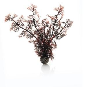 Decoratiune planta marina purpurie medie Biorb
