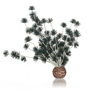 Decoratiune minge Bonsai Biorb, negru