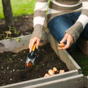 Plantator ingust Fiskars Premium